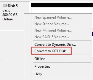 "Disk partition ""Convert to GTP Disk"" option"